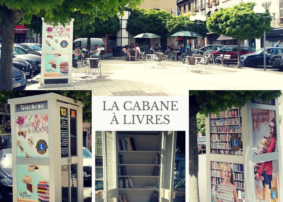 Cabane à livres : la lecture à portée de main