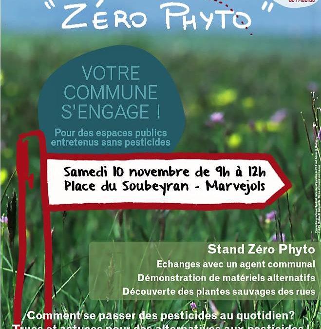 Découvrez le zéro phyto sur le marché samedi 10 novembre