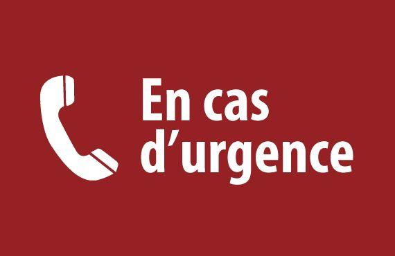 Dispositifs d'alerte pour les femmes victimes de violences